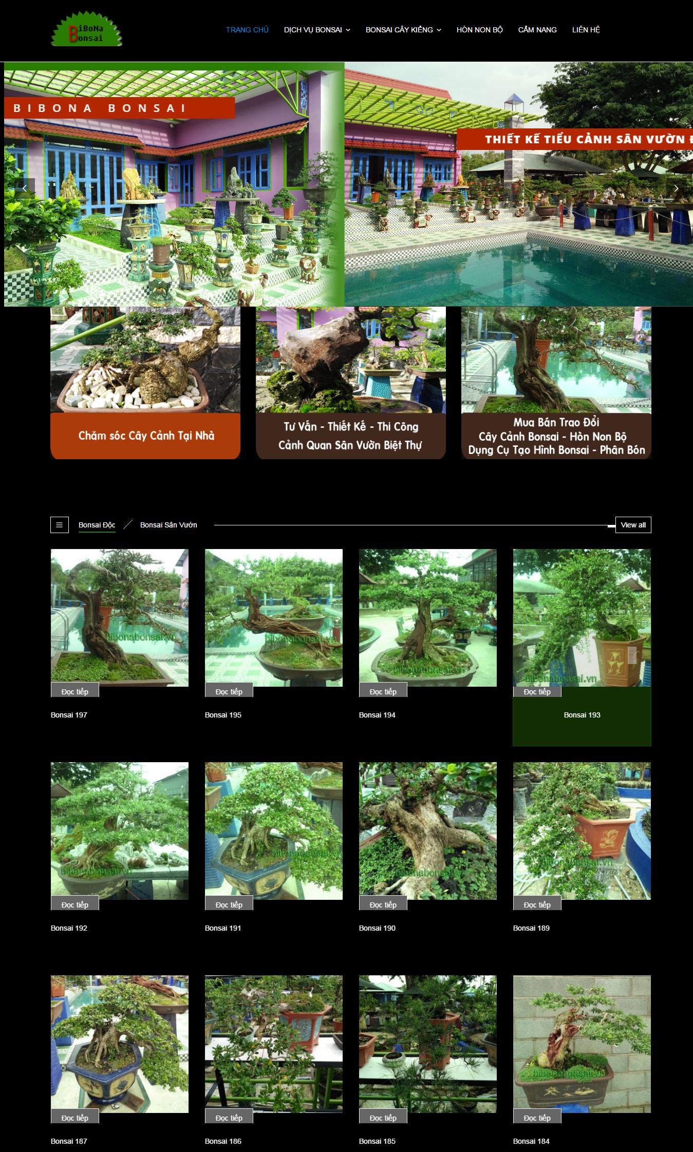 Cây Cảnh Bibona Bonsai1